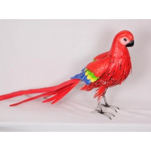 Red Metal Macaw Parrot