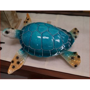Turtle With Light