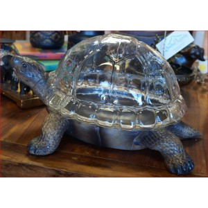 Turtle Terrarium Planter