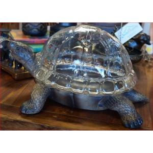 Turtle Terrarium Planter